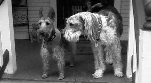 Ollie and Red on porch - early Worsham