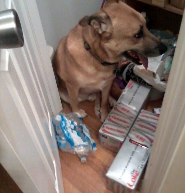 Spike in closet 2