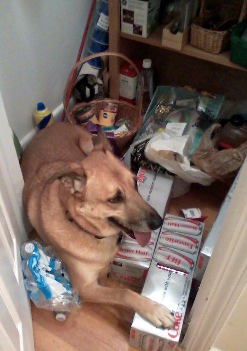 Spike in closet
